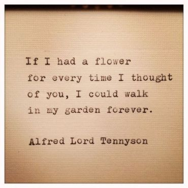 flower bloom_tennyson