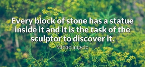 quote_michelangelo_discover it